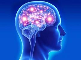 Beyin Cerrahisi