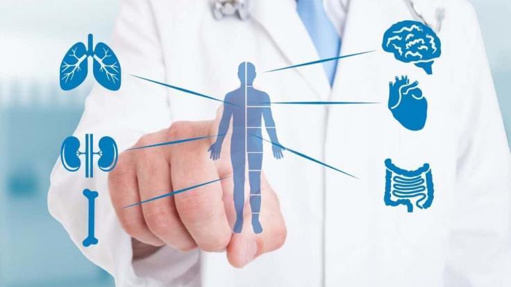 Bağışıklık Sistemi Nedir?